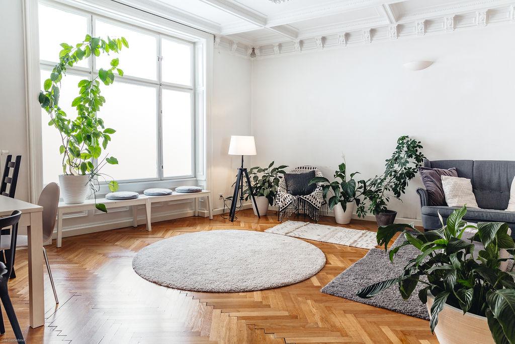 Wohnzimmer mit Blick auf die Couch und Fenster